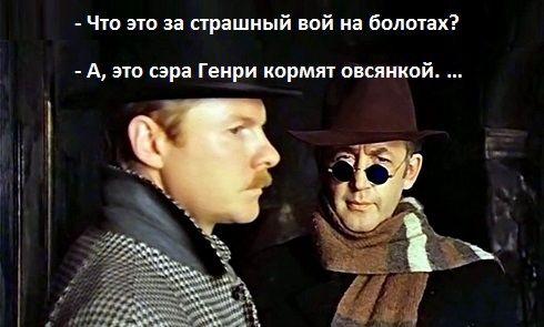 Вівсянка, Сер!