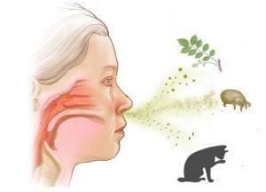 Лікування сезонної алергії у дітей і дорослих в домашніх умовах