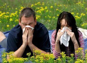 Ознаки, симптоми і лікування цілорічного або вазомоторного алергічного риніту